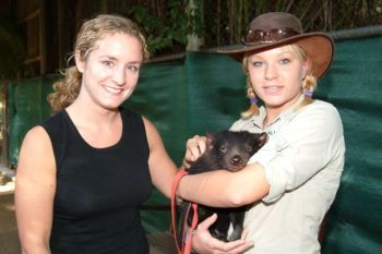 Kristy with a guest and Jinki the Tasmanian Devil
